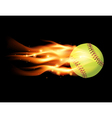 Softball on Fire vector image