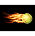 Softball on Fire vector image