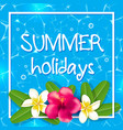 tropical summer frame with flowers vector image