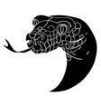 snake avatar vector image