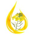 mustard oil vector image vector image