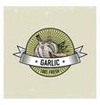 garlic vintage set of labels emblems or logo for vector image