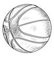 sketch of a basketball ball vector image