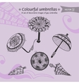 colourful umbrellas vector image