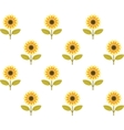 cute sunflower seamless pattern vector image