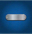 Metal oval plate on blue perforated background vector image