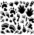 Alien monster footprints vector image