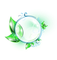 Glass sphere with green leaves vector image