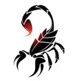 scorpio tattoo vector image