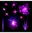 Festive purple firework set vector image