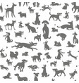 dogs silhouettes background vector image