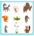 Domestic and Wild Animals Set vector image