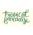 hand-written typography calligraphic brush vector image