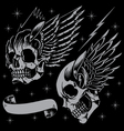 Skulls and wings vector image