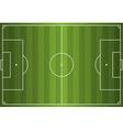 Grass Textured Soccer Field vector image