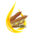 soybean oil vector image vector image