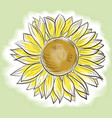 Flower sunflower painted imitating watercolor vector image