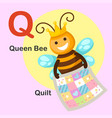 isolated animal alphabet letter q-quilt queen bee vector image vector image