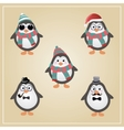Winter Hipster Penguins vector image