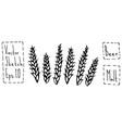malt doodle sketsh ears of barley beer bar vector image