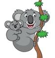 Mother and baby koala vector image