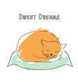Cute sleeping cat in sketch style vector image
