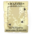 western wanted poster vector image