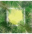 Hand drawn green frame of palm leaves vector image