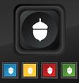 Acorn icon symbol Set of five colorful stylish vector image