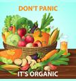 organic vegetables basket background vector image