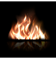 Burning fire vector image vector image