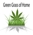Green Grass of Home vector image