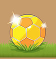 soccer gold ball field grass vector image