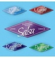 Dance Festival insignia and labels for any use vector image