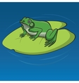 Frog sitting on the leaf vector image