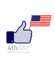 Thumb up hold american flag icon vector image