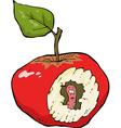 worm eaten apple vector image