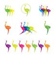 ostrich logos vector image