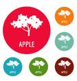 apple tree icons circle set vector image