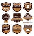 set of retro badges vector image