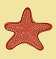 starfish sea animals vector image