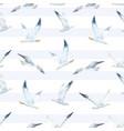 watercolor seagull pattern vector image vector image