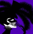 dark lady and mask vector image