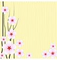 backgrounds Flower vector image