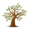 Realistic tree with green leaves on white vector image