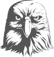 Eagle Silhouettes Front View vector image