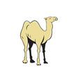 Camel Side View Cartoon vector image vector image