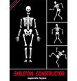 skeleton constructor vector image