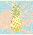 Pineapple2 vector image