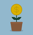 money coint plant vector image